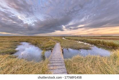Boardwalk in Tidal Marshland nature reserve Verdronken land van Saeftinghe in Province of Zeeland. Netherlands
