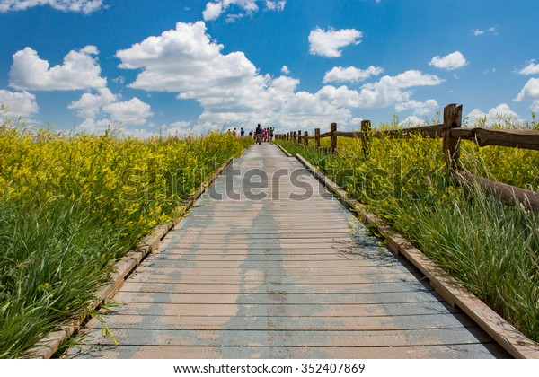 Boardwalk up to tourist outlook under blue sky