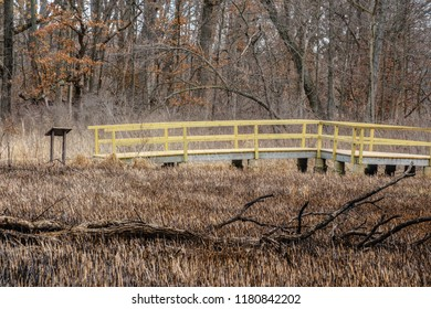 Boardwalk and trail guide by ephemeral wetland with fallen tree in northern Illinois, USA, for themes of nature, conservation, spring