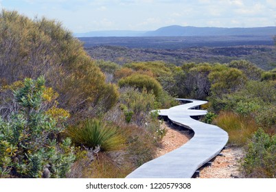 Boardwalk walking track through woodland at Wattamolla, Royal National Park, NSW, Australia with mountains of the Great Dividing Range in the distance