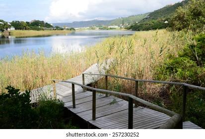 Boardwalk in the Wilderness - Garden Route South Africa