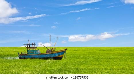Boat in a field background