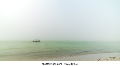 Boat with fisherman on a foggy morning, birds flying around boat