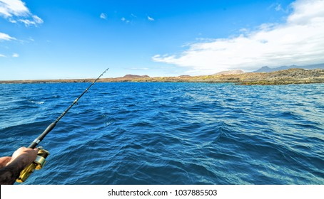 Boat fishing on Tenerife