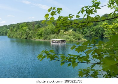Boat floating on the lake behind the tree branches