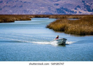 The boat isolated on the lake with growing grass