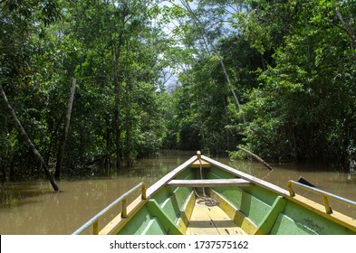 Boat on the amazon river, rainforest adventure, inside the jungle, canoe drive, dense amazonian jungle