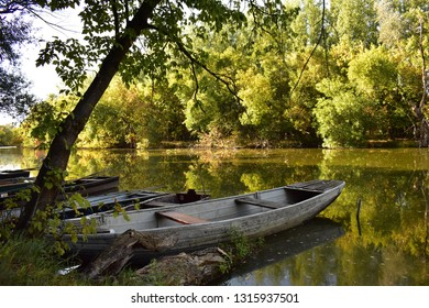 Boat on a backwater