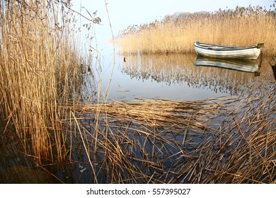 Boat on a lake surrounded by reeds
