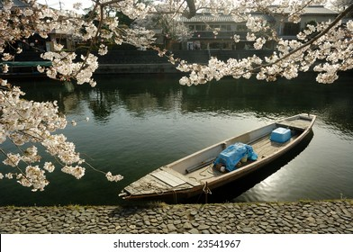 A boat on the river with cherry blossom. (Kyoto Uji, Japan)