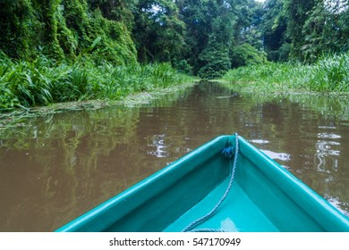Boat on a river in Tortuguero National Park, Costa Rica
