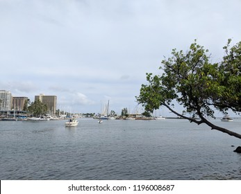 Boat sail in harbor with Skyline of Waikiki, yachts and boats in Ala Moana harbor, Hotels, Crane, and Hilton Hawaiian Village in the distance in Waikiki, Oahu, Hawaii.  2018.