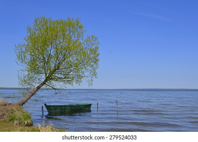 A boat tied to a tree
