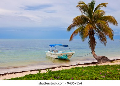 Boat tied to a tree in Sian Kaan, México