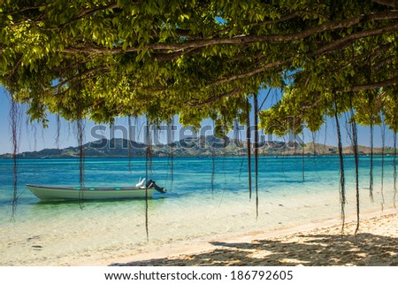 Boat and trees on a tropical beach in Fiji Islands