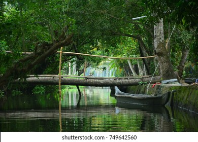 Boating in Kerala India green nature
