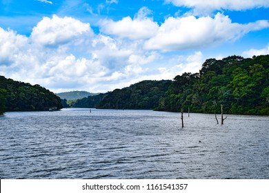 Boating in Periyar lake, Thekkady, Kerala, India