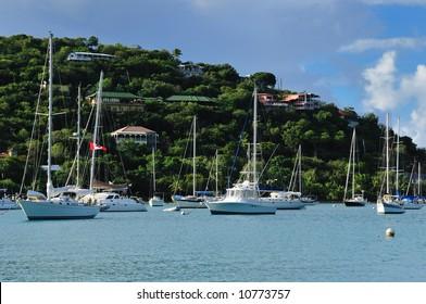 Boats anchored in a harbor in St. John, U.S. Virgin Islands