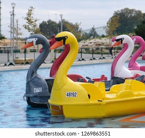 Boats in the form of colorful plastic swans in a reservoir of a park in the city of Holon in Israel