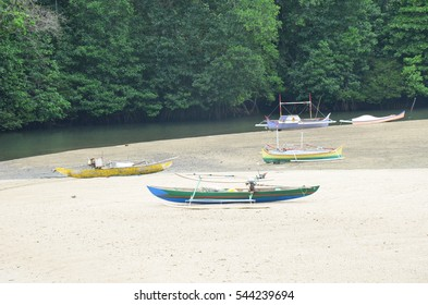 boats in jungle