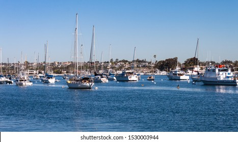 boats moored in crowded Newport Beach harbor with coastline in the background