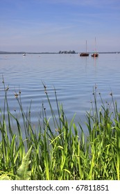 boats on lake steinhuder meer with reed in the front, lower saxony, germany