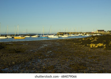 Boats on their moorings beside Cockle Island in the natural tidal harbour at Groomsport in Co Down,Northern Ireland with  Belfast Lough in the background.