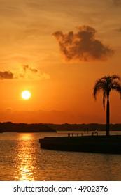 Boca Ciega Bay Sunrise with palm tree. Treasure Island Florida