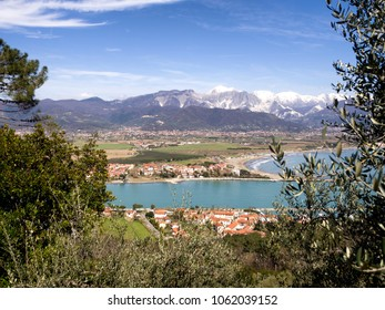 Bocca de Magra, river mouth, glimpsed through the trees. Massa Carrara region of Italy. Beautiful landscape. Spring day. Carrara marble mountains, the Apuan Alps, in background.