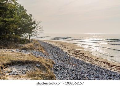 Boda coast eastern nature reserve on Oland, Sweden. Haze on a sunlit sandy beach on a fine spring morning.