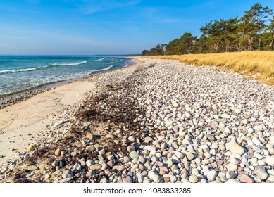 Boda coast eastern nature reserve on Oland, Sweden. Zones of naturally polished stones and sand followed by grass and then pine trees is typical of the regions beaches.