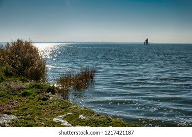Bodden on Fischland in Germany in back light