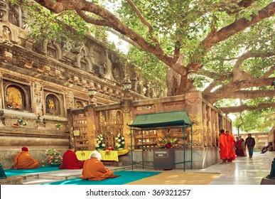 BODH GAYA, INDIA - JAN 9: Many prayers sitting around the Bodhi tree, which the buddha became enlightened on January 9 2013. BodhGaya is a sites related to Buddha, with Kushinagar, Lumbini and Sarnath