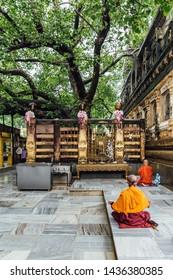 BODH GAYA, INDIA. JUL 27, 2017: Indian Buddhist monk in meditation near The Bodhi Tree near Mahabodhi Temple while raining at Bodh Gaya, Bihar, India.