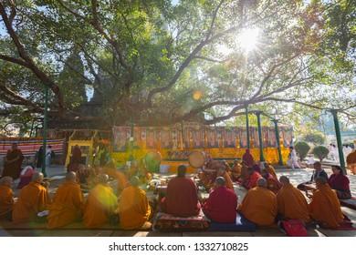 BODHGAYA, INDIA - FEB 20 2019: Buddhist Monks Sitting Under the Bodhi Tree Bodhgaya, India.