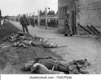Bodies of former SS guards lie on the bank of a moat surrounding the Dachau Concentration Camp. Liberated prisoner's killed the guards by beating them to death. Seventh US Army soldiers patrolled the