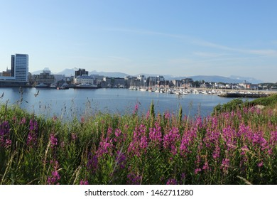 BODO, NORDLAND COUNTY / NORWAY - JULY 27 2019: Morning view on the  Bodo (Bodø) harbour. Summer. Norway