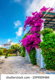 Bodrum, Turkey - May 25, 2018 : Bodrum Town street view. Bodrum has beautiful traditional houses in Turkey.
