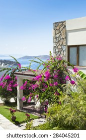 Bodrum, Turkey - September 07, 2014: General view of Bodrum house terrace with bougainvillea flower. Bodrum is very famous place of Turkey.