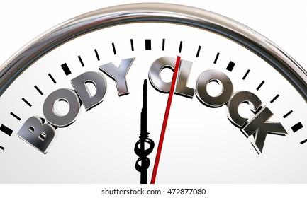 Body Clock Health Wellness Life Longevity Words 3d Illustration