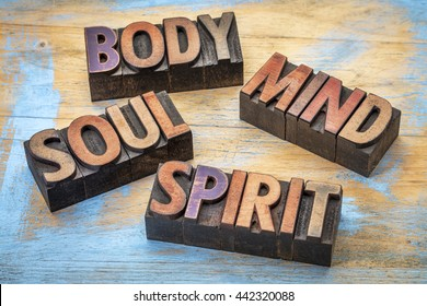 body, mind, soul and spirit word abstract -text in vintage grunge wood letterpress printing blocks against grunge wood