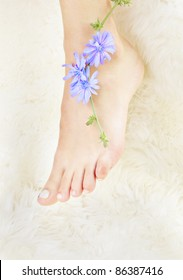 body part shot of beautiful healthy young woman's legs on white fur with blue chicory flower