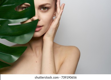 body, skin, young woman, leaf of a palm