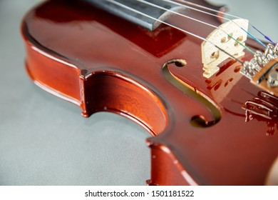 Body of a Violin on grey background