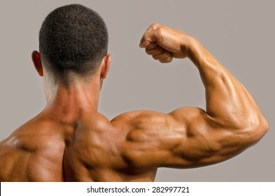 Bodybuilder showing his back,shoulders, triceps and biceps muscles, personal fitness trainer
