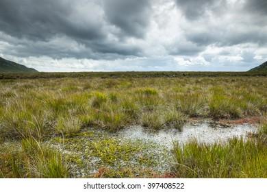 Bog lands, Connemara, Ireland