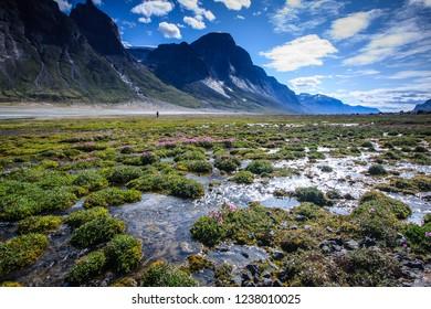 Boggy ans watery hike along the trail in Akshayuk Pass, Baffin Island, Nunavut