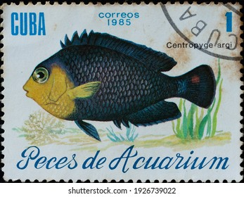 Bogor, West Java, Indonesia - February 24, 2021: A post stamp printed in Cuba, shows Centropyge argi or Cherubfish  also known as Pygmy angelfish, is a species of marine water, circa 1985.