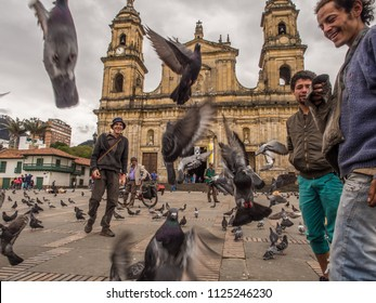 Bogota, Colombia - April 30, 2016: Pigeons and  tourist was on Bolivar Square in Bogota