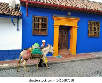 BOGOTA, COLOMBIA - MAY 2019:  Man with donkey in La Candelaria, old town / historic center / tourist area of Bogota famous for picturesque old streets and beautiful colorful architecture.